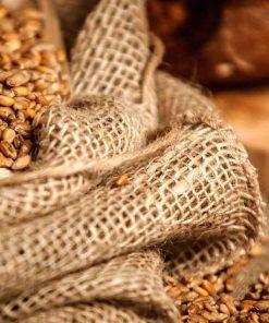 Cereals & Legumes