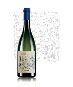 Italian white wine Povento